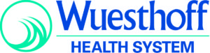 WHSystem logo NO tag horiz color_800KB
